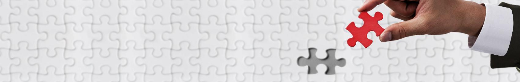 顧客視点によるWebブランディングで、見込み客育成。