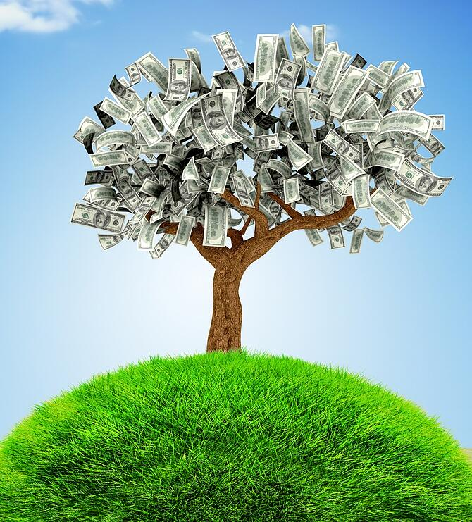 3D Money growing on a tree - financial concepts.jpeg
